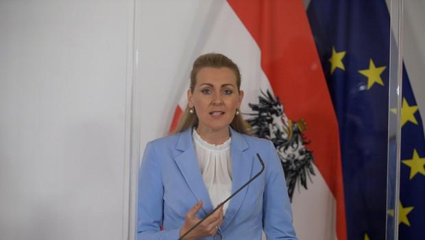 Avstrijska ministrica za delo odstopila zaradi obtožb o plagiatorstvu (foto: profimedia)