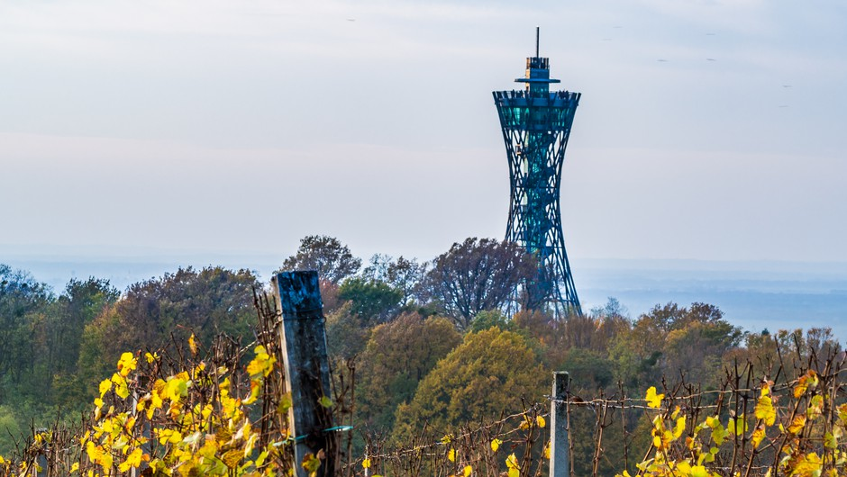 Fontana piv v Žalcu, vinska fontana v Marezigah in razgledni stolp v Lendavi povečali turistični obisk (foto: Shutterstock)