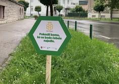 15 dobrih praks trajnostnega urbanega razvoja v Sloveniji