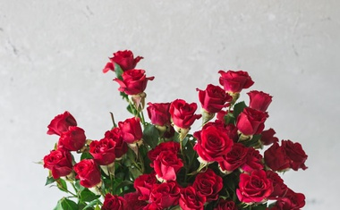 Cvetlični HOROSKOP: Katero cvetje in šopek se ujemata z vašim zodiakalnim znamenjem?