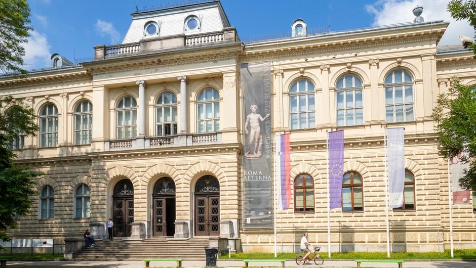 Muzeji in galerije v regijah z ugodnejšo epidemiološko sliko znova odpirajo svoja vrata (foto: profimedia)