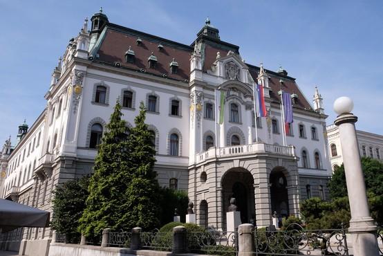 Na ljubljanski univerzi menijo, da bi bil lahko vpis na fakultete ogrožen, ker vlada ni podala soglasja k razpisu