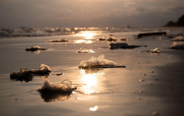 Čas je za spremembe! V času epidemije je svet (spet) preplavila plastika (foto: PROFIMEDIA)