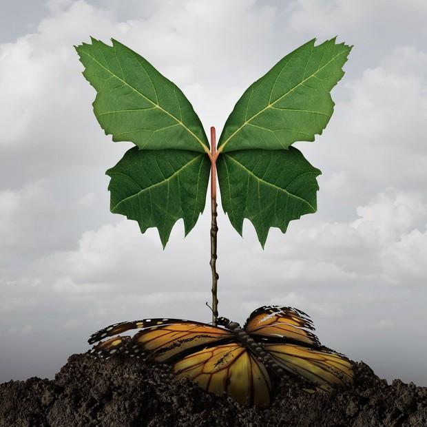 4 osebne koristi zavedanja prejšnjih življenj (foto: profimedia)