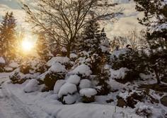 Mrzla zračna gmota nad Slovenijo potisnila temperature globoko pod ničlo