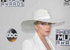 Ukradena buldoga Lady Gaga spet doma, ranjeni sprehajalec psov bo okreval
