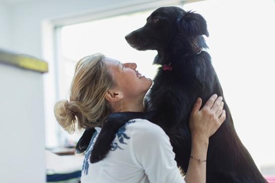 Bodite odgovoren lastnik hišnega ljubljenčka - zaščitite kosmatince pred zajedavci!
