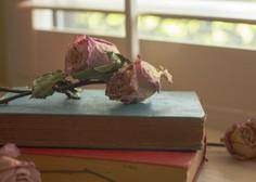 Cvetka Lipuš: Pri pisanju prevzamejo besede krmilo in te vodijo v neznano