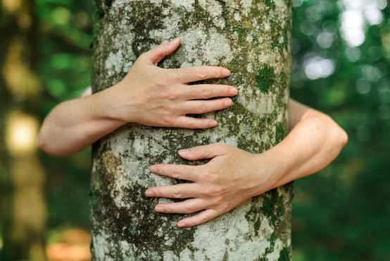 7 načinov, kako bolj odgovorno ravnati z naravo