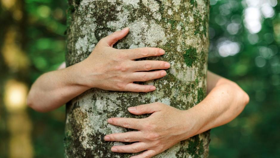 7 načinov, kako bolj odgovorno ravnati z naravo (foto: Profimedia)