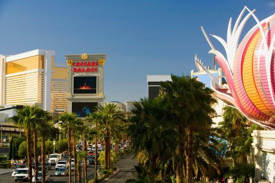 V Las Vegasu želijo prepovedati okrasno travo
