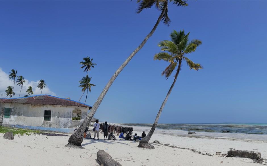 5 zanimivosti in priporočil popotnikom, ki so namenjeni v Zanzibar (foto: Vid Legradič)