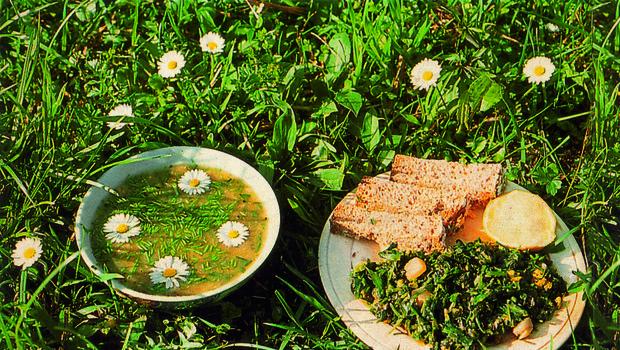 DIVJA HRANA na krožniku: recepti Daria Cortese (foto: Dario Cortese)