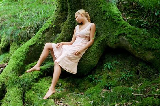 Energijska prizemljitev (vaja prizemljevanja s pomočjo dreves po Abby Wynne)