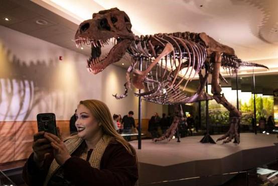 Tiranozaver hodil počasneje kot človek