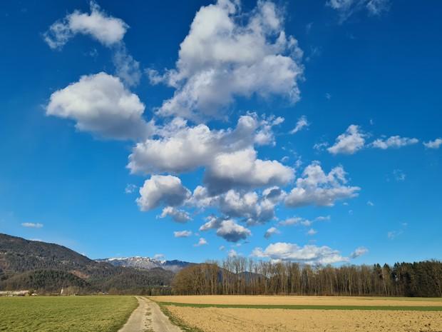 Bele ovčice. Če se ovčice polnijo in rastejo, lahko prinesejo tudi dež. (foto: Vid Legradic)
