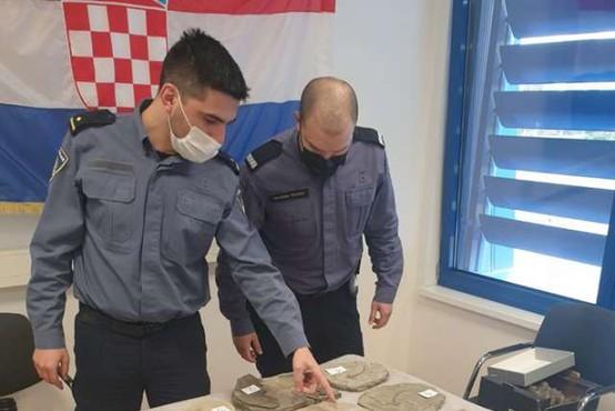Hrvati v avtomobilu s slovensko registracijo odkrili veliko količino fosilov