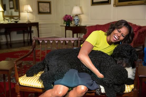 Družina Obama ostala brez hišnega ljubljenčka, pes Bo podlegel bolezni