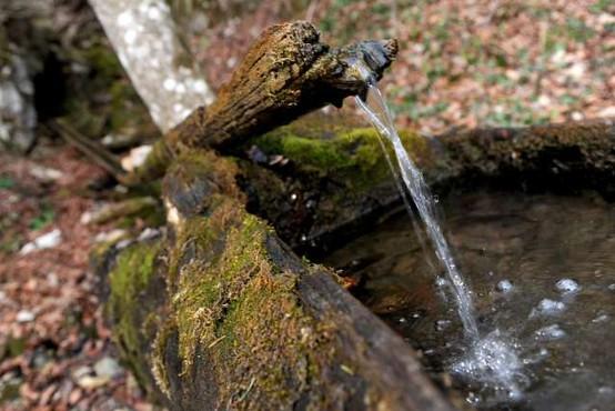 Gibanje Za pitno vodo je v DZ prineslo skoraj 50.000 overjenih podpisov