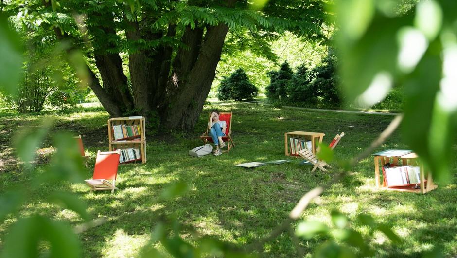 Knjižnica pod krošnjami vabi na brezplačno branje, listanje in uživanje (foto: Knjižnica pod krošnjami)