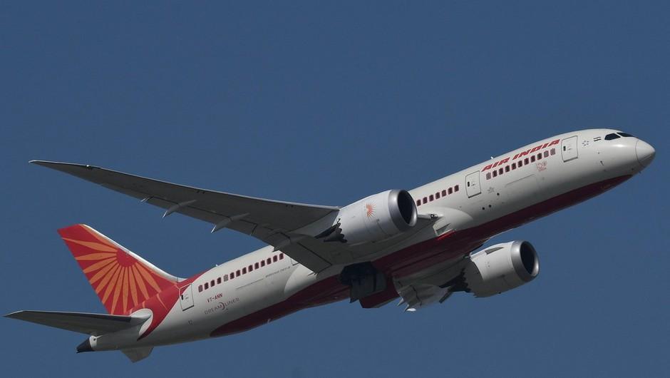Zaradi netopirja, ki je zašel v kabino, se je boeing Air Indie po vzletu moral vrniti na letališče (foto: profimedia)