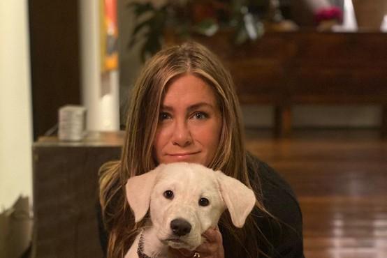 Jennifer Aniston in 8 drugih zvezdnic, ki se na Instagramu ne bojijo pokazati brez ličil