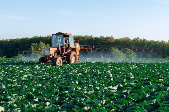Ob svetovnem dnevu ozaveščanja o škodljivcih stroka opozarja na varno uporabo biocidov