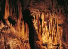 Turiste bo ponovno sprejela tudi Postojnska jama