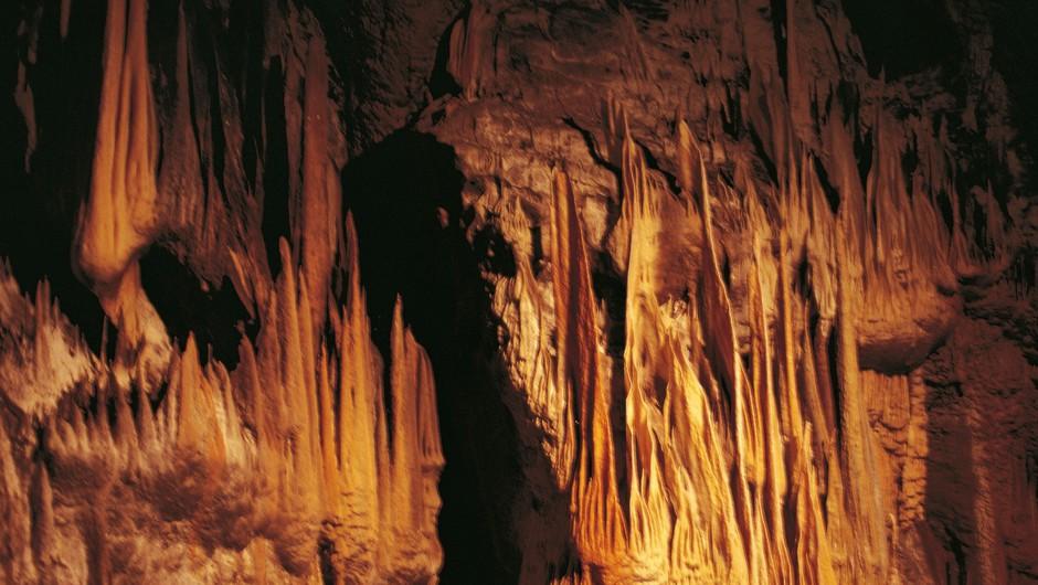 Turiste bo ponovno sprejela tudi Postojnska jama (foto: Profimedia)