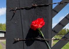 Ljubezen za bodečo žico: roman o resnični ljubezenski zgodbi za časa Hitlerjevega režima