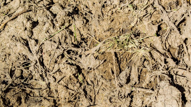Sodno pridržanje za četverico, vpleteno v nezakonito odloženo blata v Hočah (foto: profimedia)