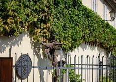 Slovenija je vinorodna dežela z več kot dva tisočletno tradicijo gojenja vinske trte