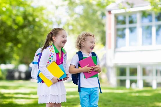 Številne poletne šole letos z izvedbo na daljavo