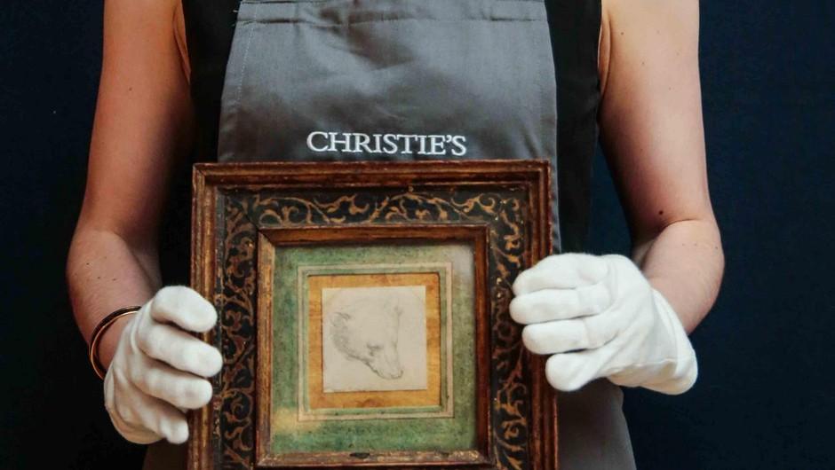 Za da Vincijevo risbico medvedje glave kupec na dražbi odštel 8,8 milijona funtov (foto: profimedia)