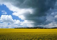 V torek bo sončno in vroče, ponoči pa nas bo prešla hladna fronta z nevihtami