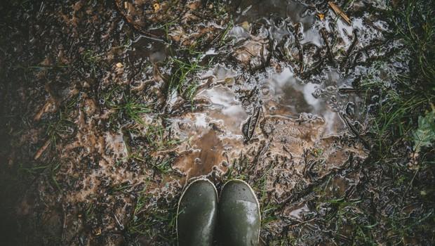Konec tedna bi lahko padlo od 50 do 80 litrov dežja na kvadratni meter (foto: profimedia)