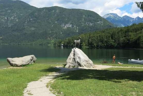 V Sloveniji ima status kopalne vode več kot 40 lokacij