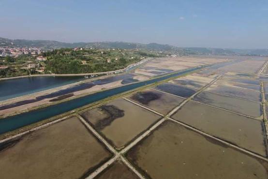 Solinarje v Sečoveljskih solinah je v pripravah na začetek sezone najbolj prizadel deževen maj