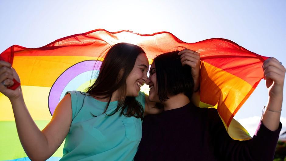 Budimpeške ulice napolnili nasprotniki zakona in podporniki skupnosti LGBTQ (foto: profimedia)