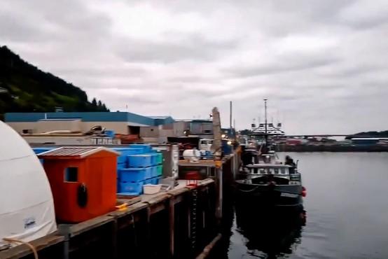 Pred obalo Aljaske potres z magnitudo 8,2