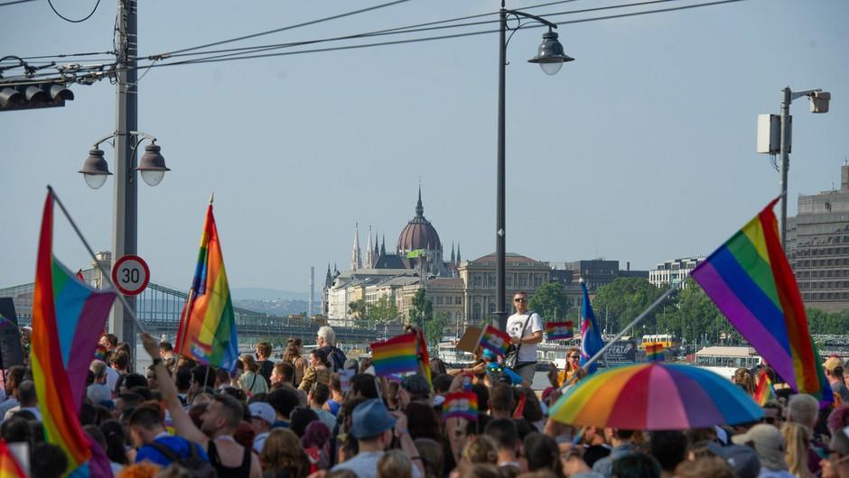Madžarska: po zakonu, ki omejujejo širjenje vsebin LGBTIQ med mladimi, še odlok o prodaji knjig (foto: profimedia)