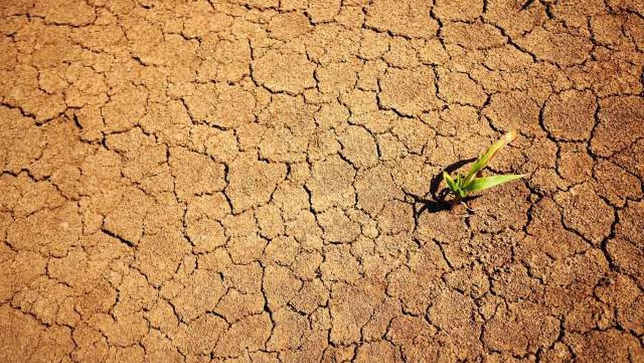 IPCC: Povprečna globalna temperatura okoli 2030 višja za 1,5 stopinje (foto: Xinhua/STA)