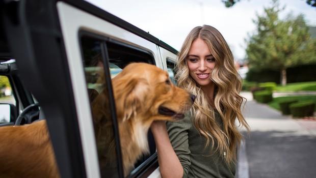 Kako psi ločijo, če ste nekaj naredili namenoma ali pa po nesreči (foto: Profimedia)
