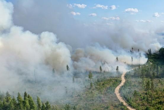 Požarom v Rusiji ni videti konca, letos so uničili območje za pol Nemčije