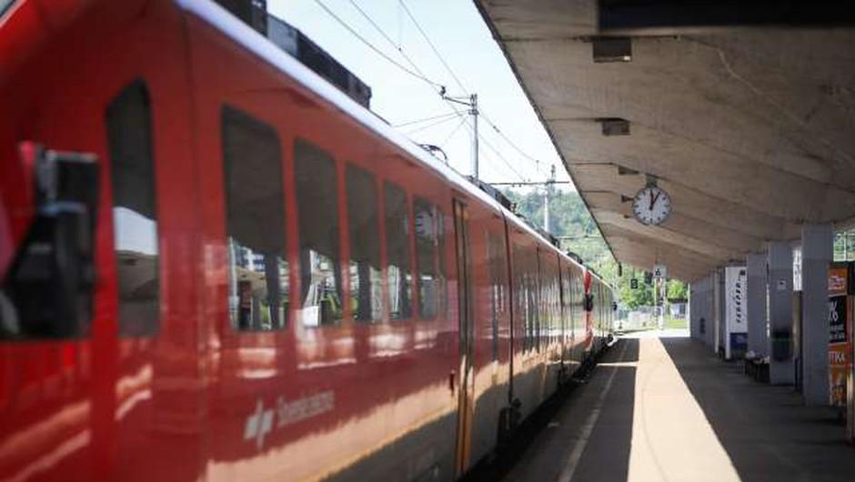 Mladi Evropejci bodo lahko znova brezplačno z vlakom odkrivali Evropo (foto: Anže Malovrh/STA)