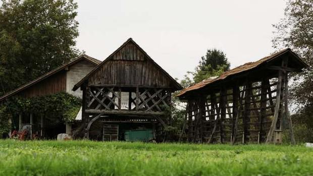 V zadnjem desetletju skoraj enako kmetijskih zemljišč, manj kmetij (foto: Tina Kosec/STA)