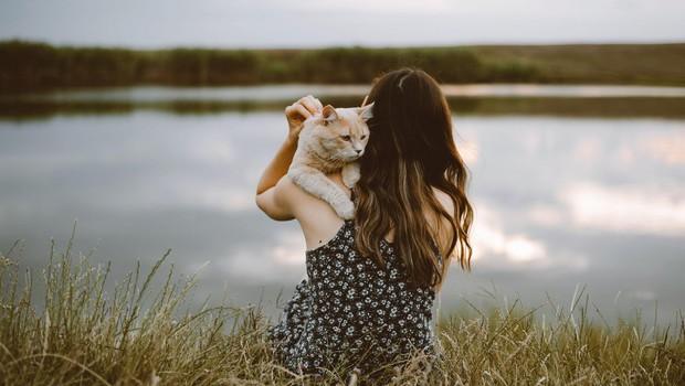 Mačke se na skrbnike enako močno navežejo kot otroci in psi, kažejo študije (foto: profimedia)