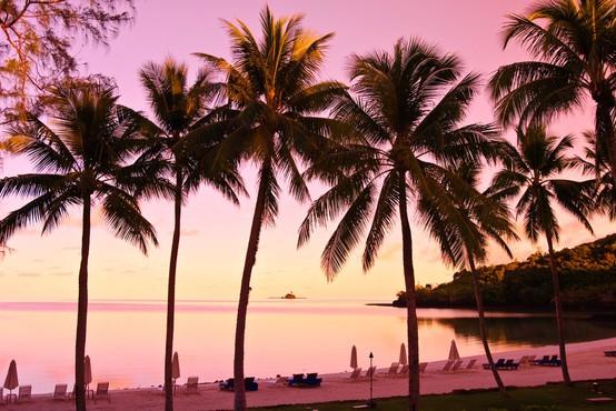 Z 99 odstotki cepljenih je Palau postal najbolj precepljena država na svetu