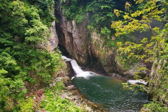 Ob 25-letnici Parka Škocjanske jame posvet za čisto Reko